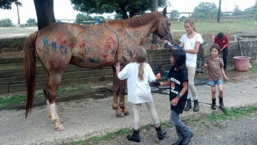 Running a horseback riding summer camp and need ideas for crafts and games while campers are out of the saddle? We have several tried and true ideas that our campers love!