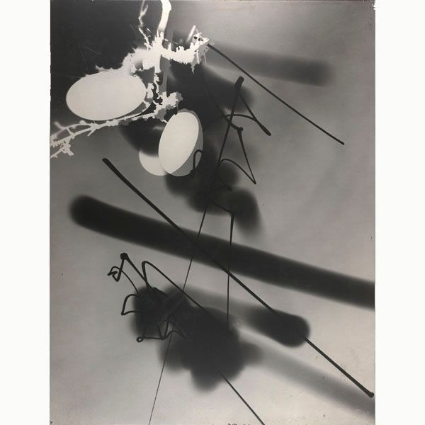 The New Landscape: Experiments in Light by Gyorgy Kepes