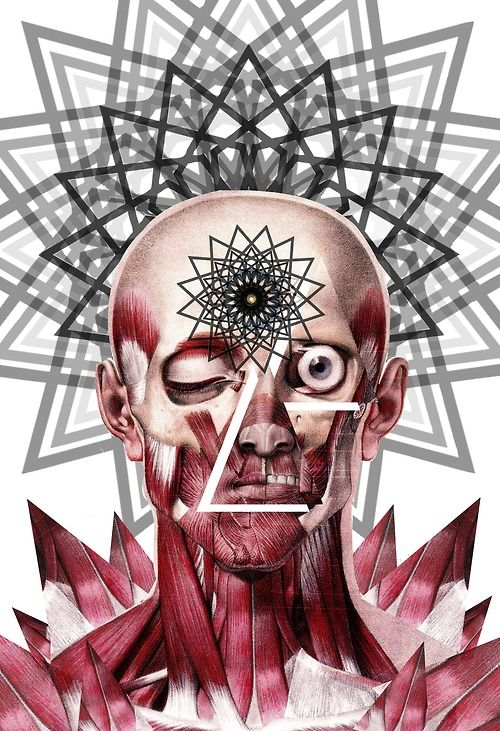 """perception"" anatomical collage art by bedelgeuse"