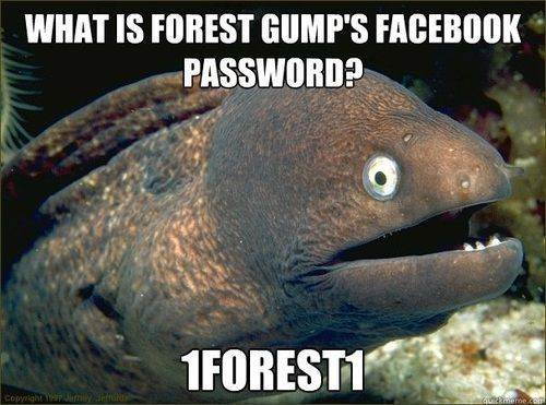 wun forest wun!Funny Pics, Laugh, Funny Pictures, Bad Jokes Eel, Funny Stuff, Humor, Things, So Funny, Funny Memes