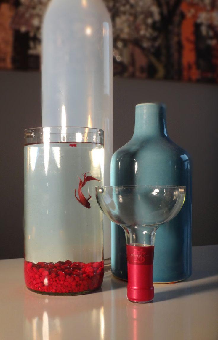 No clean aquarium betta fish tank - Glass Wine Bottle Betta Fish Tank Aquarium Kit Complete Kit Via Etsy