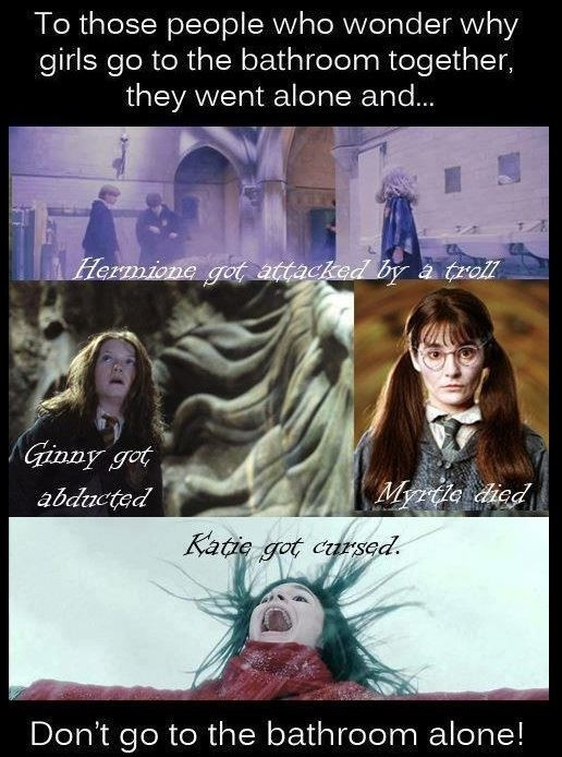 do you understand now!?Girls, Laugh, Harrypotter, Life Lessons, Funny, Bathroom Alone, So True, Harry Potter Humor, True Stories