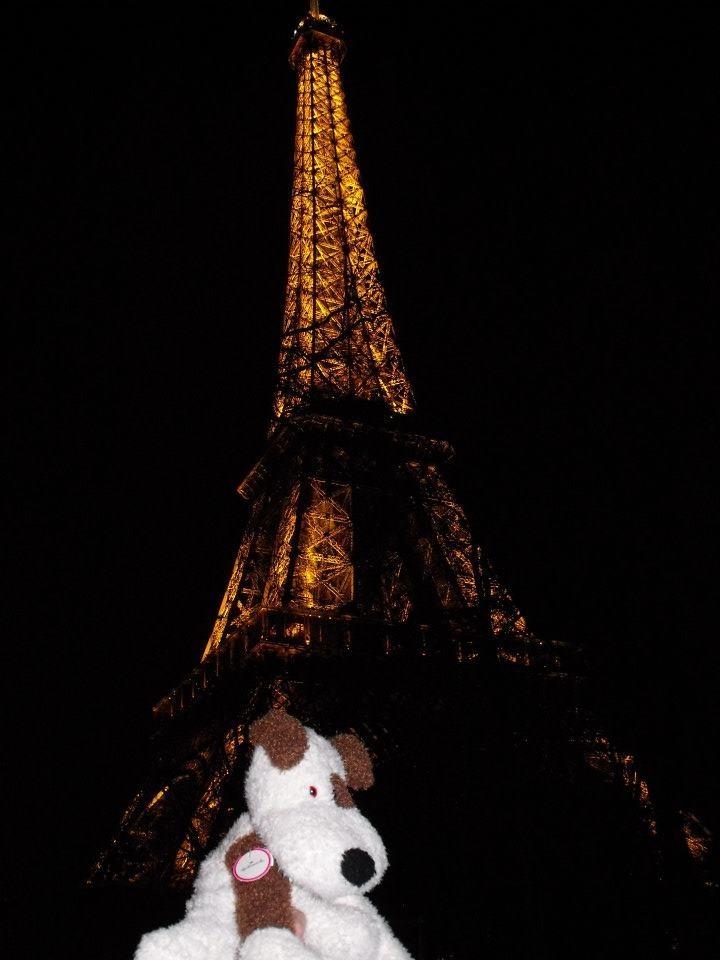 Rocco in Paris