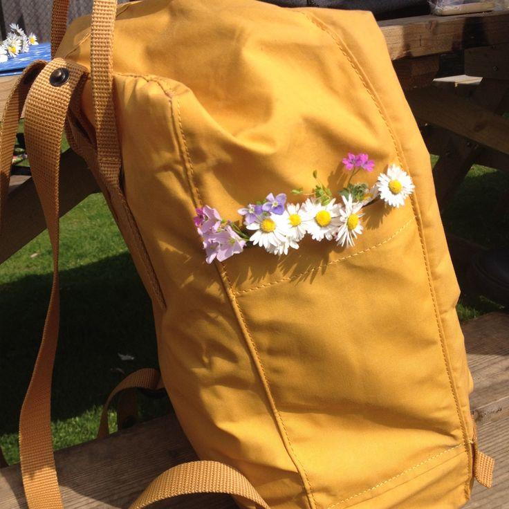 fruitbub:   pressed the flowers we picked... - - ̗̀ Sunshine ̖́- | florahlkid