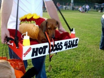 "Adorable!"" Hot Dogs 4 Sale""  July 4th Parade Ideas"