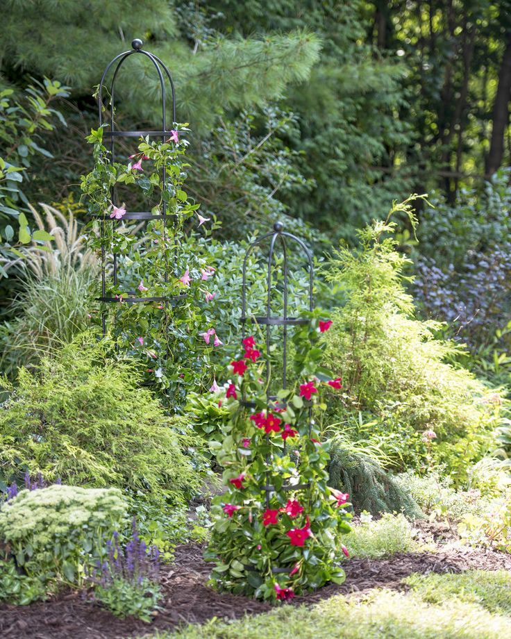 Essex garden supply