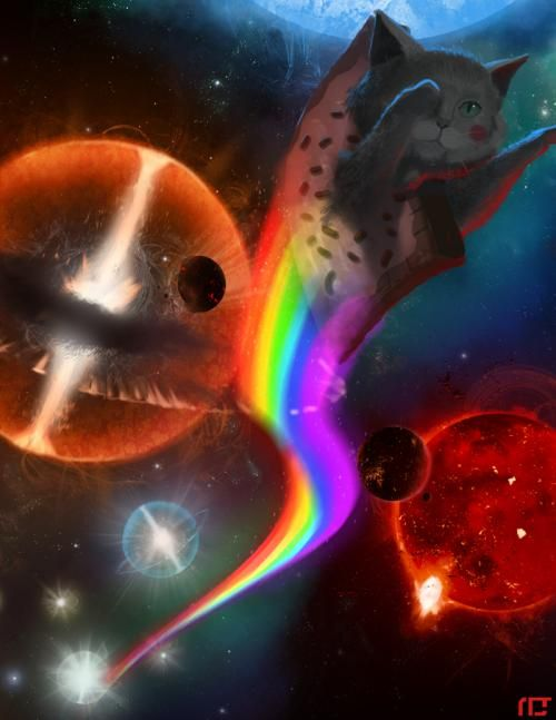 57 Best Space Cat Images On Pinterest