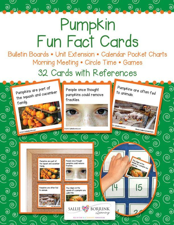 Introduce your learners to fascinating facts about pumpkins! Pumpkin Fun Fact Cards are great for calendar time, circle time, bulletin boards, centers, games and more. A great addition to your pumpkins unit!