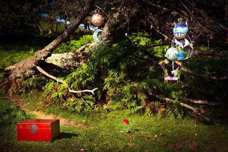 """""""Creo que para su evasión, aprovechó una migración de pájaros silvestres."""" Así comienza el cuento de un Principito que con sus preguntas nos dejará a todos pensando en su ausencia. http://www.scenepress.com/category/peques/"""