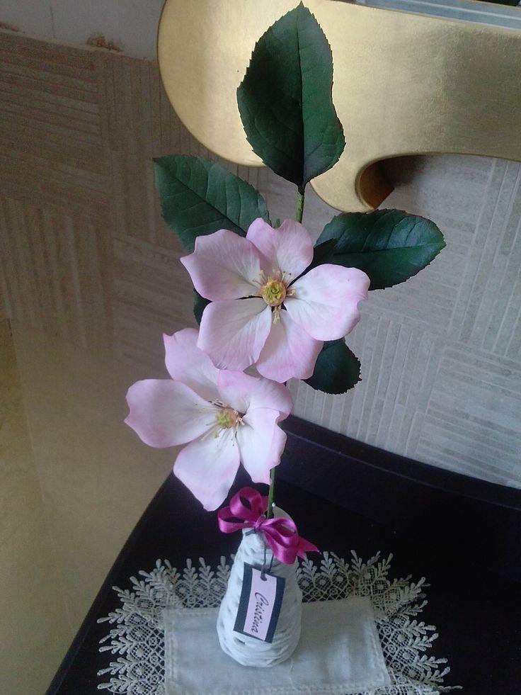 rosa selvatica in porcellana fredda di Cristina R.