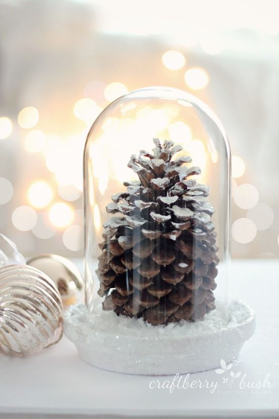 Pine cone in a cloche. Good idea for my enormous pine cone from Terrain.