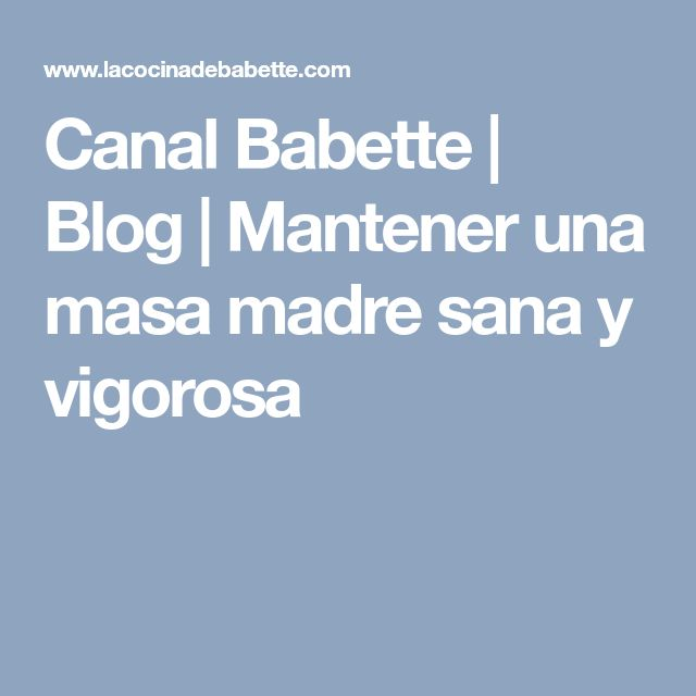 Canal Babette   Blog   Mantener una masa madre sana y vigorosa