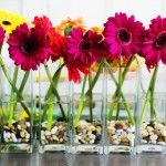 down the center of a long table - a Gerbera hit!