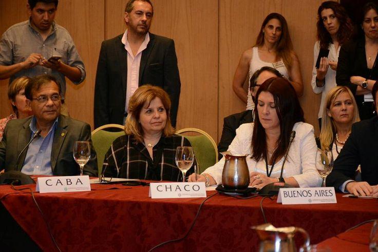 #Crespo representó a Chaco en el Consejo Federal de Salud - Diario Chaco: Diario Chaco Crespo representó a Chaco en el Consejo Federal de…