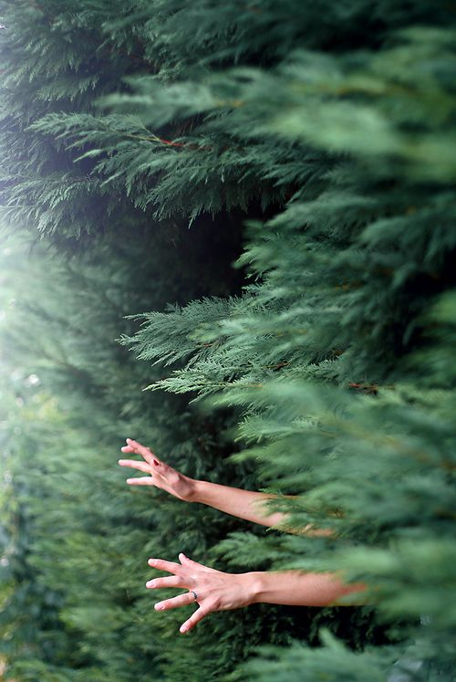 grafika hands, girl, and nature