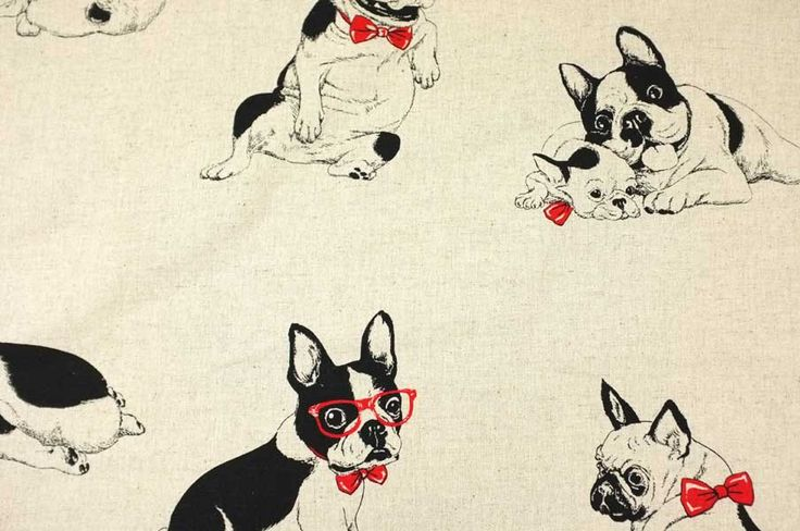 Boston Terriers on lightweight canvas, black and red on natural, imported fabric from Japan