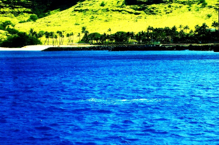My picture of hawaii