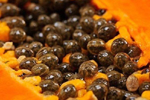 Las semillas de esta fantástica fruta, tiene múltiples beneficios que deberíamos de aprovechar. Si eres una de esas personas que viven estando enfermos o enfermas este es un artículo que definitivamente deberás leer, y seguir los consejos que te damos; todos los días de forma rutinaria o religiosa, para así ver resultados en el menor …