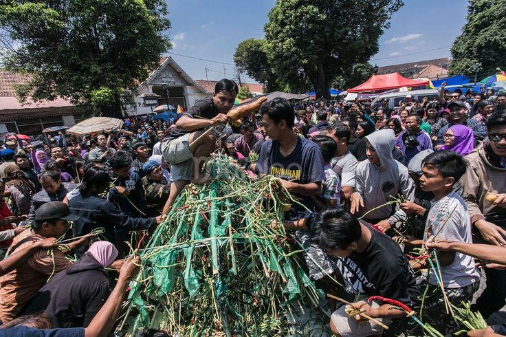 Grebeg Puro Pakualaman Yogyakarta. (Reza Fitriyanto/Maioloo.com)