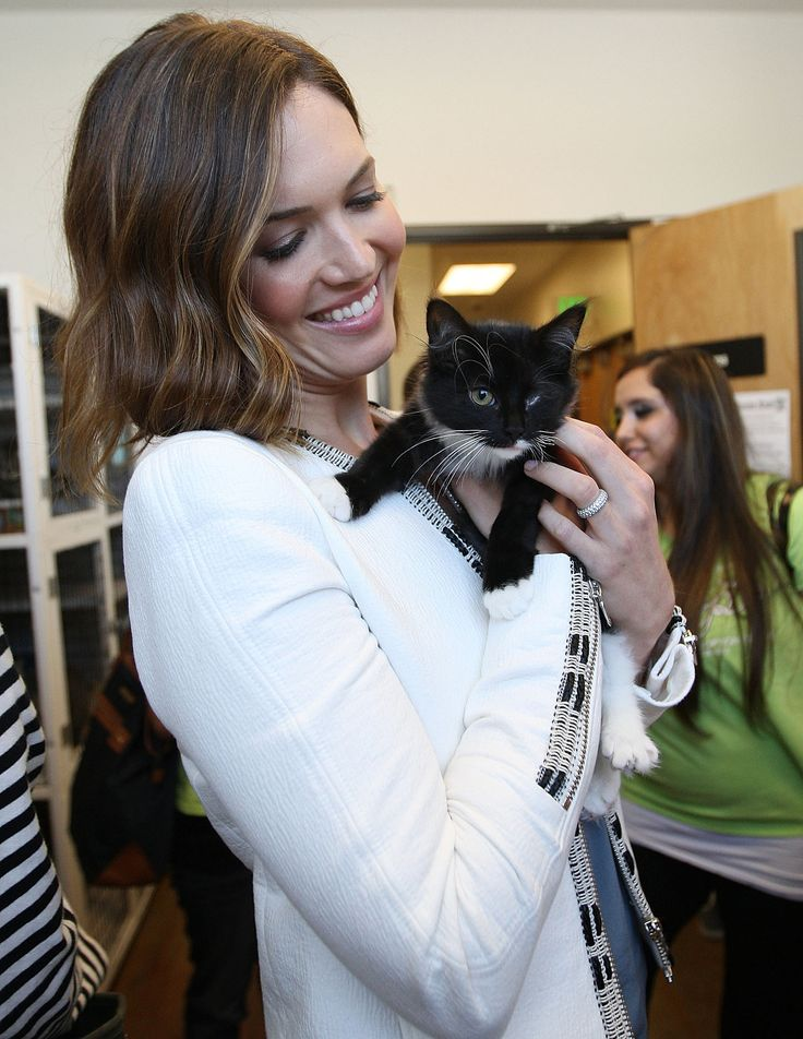 """Mandy Moore considers herself a huge """"cat lover, cat person, cat advocate, cat supporter,"""" but she wants to take the """"crazy"""" out of cat lady. """" http://www.popsugar.com/pets/Mandy-Moore-Helping-Cats-Nationwide-35232648"""