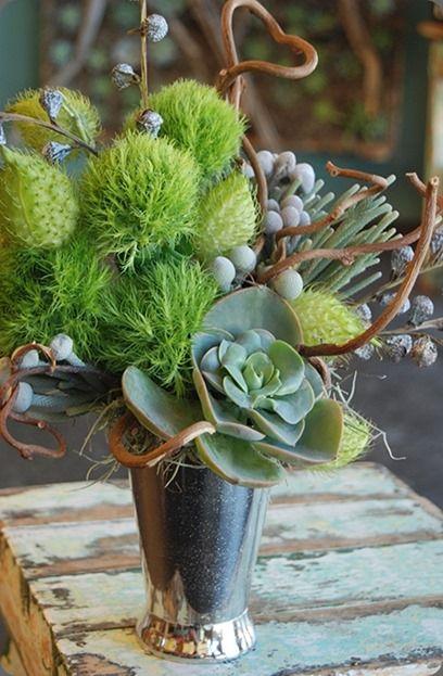 succulent-silvercup-55-detail cebolla fine flowers