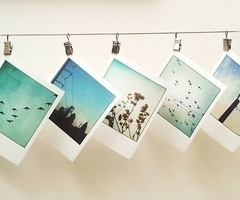 polaroids ... maybe recreate with instagram snaps?