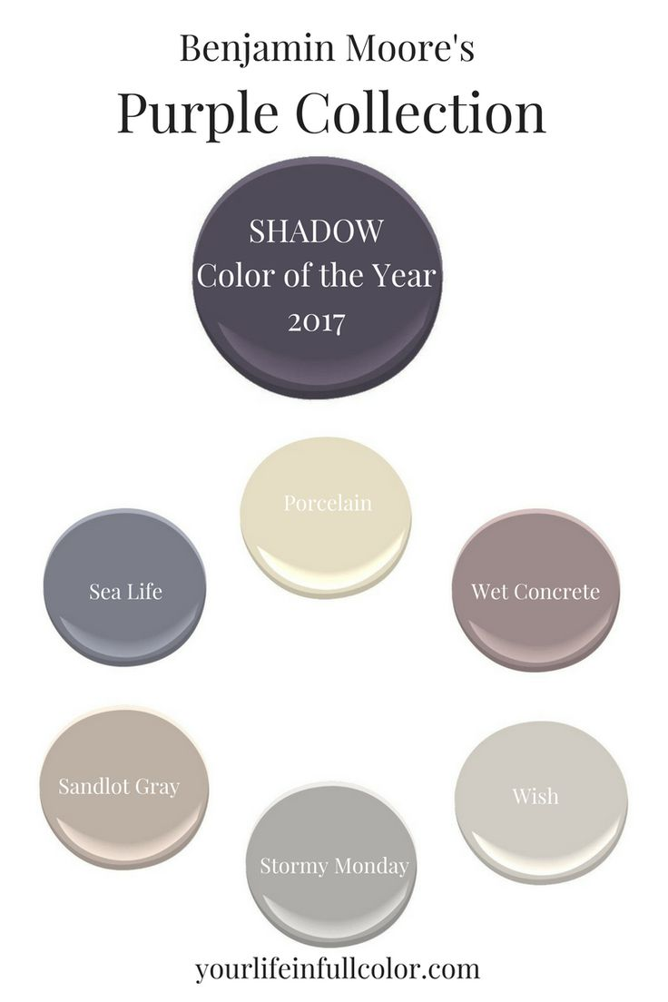 "Benjamin Moore's Shadow 2117-30 was created to play beautifully in the ""purple sandbox""! Porcelain 2113-60, Sea Life 2118-40, Wet Concrete 2114-40, Sandlot Gray 2107-50, Stormy Monday 2112-50, Wish AF-680."