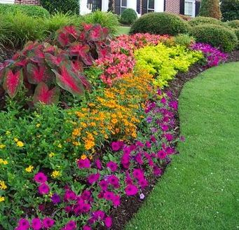 25 best ideas about small flower gardens on pinterest for Large flower bed ideas
