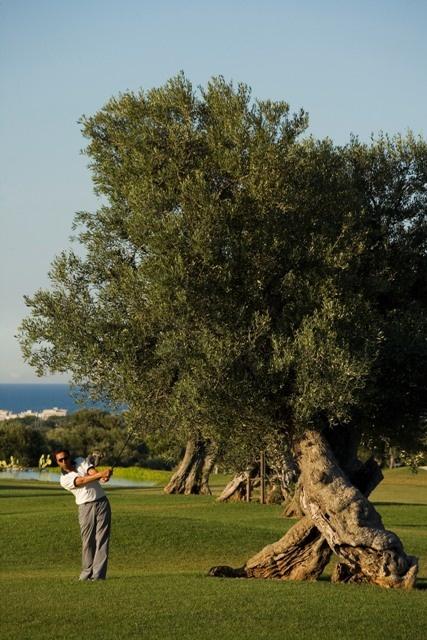 Photo from the Golf Camp at Masseria Torre Maizza and Masseria Torre Coccaro, Savelletri, Fasano, Puglia, Italy