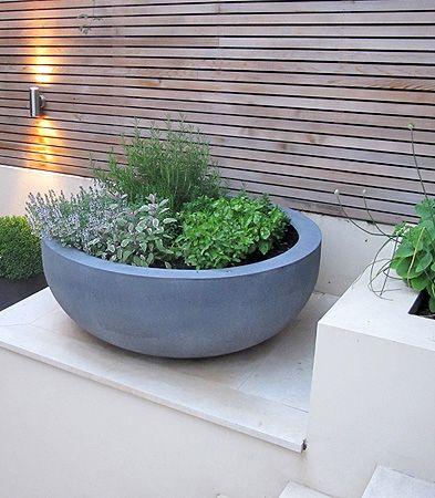 Herbs in Urbis Discus planter