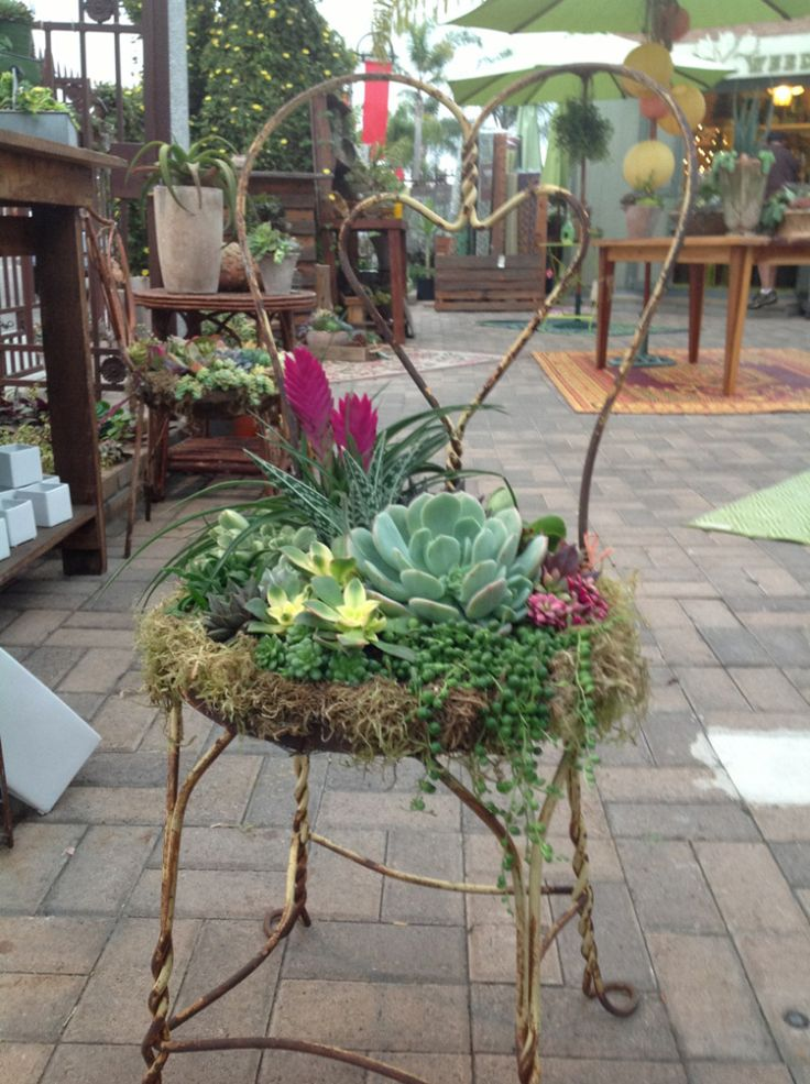 Created by Chicweedgirls: We found this great heart shaped chair and planted it up with some gorgeous succulents and tillandsia's. We have done several custom ones that clients have provided their chair and we work our magic. Jon meticulously creates a wire form for seating and adheres the moss cushion and then creates a beautiful design according to the chair!