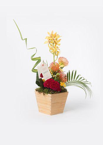 MAIA | Bambu kasa içinde düzenlenmiş Sarı Cymbidium orkide, leucospermum, kırmızı horoz ibiği, sarı kalanchoe çiçekleri. | Bloom and Fresh