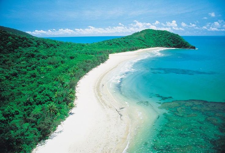 cape tribulation - Google Search
