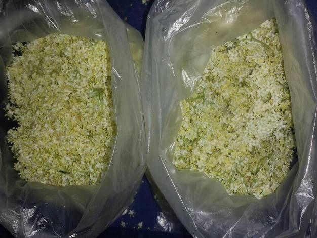 Fagyasztott bodzavirág