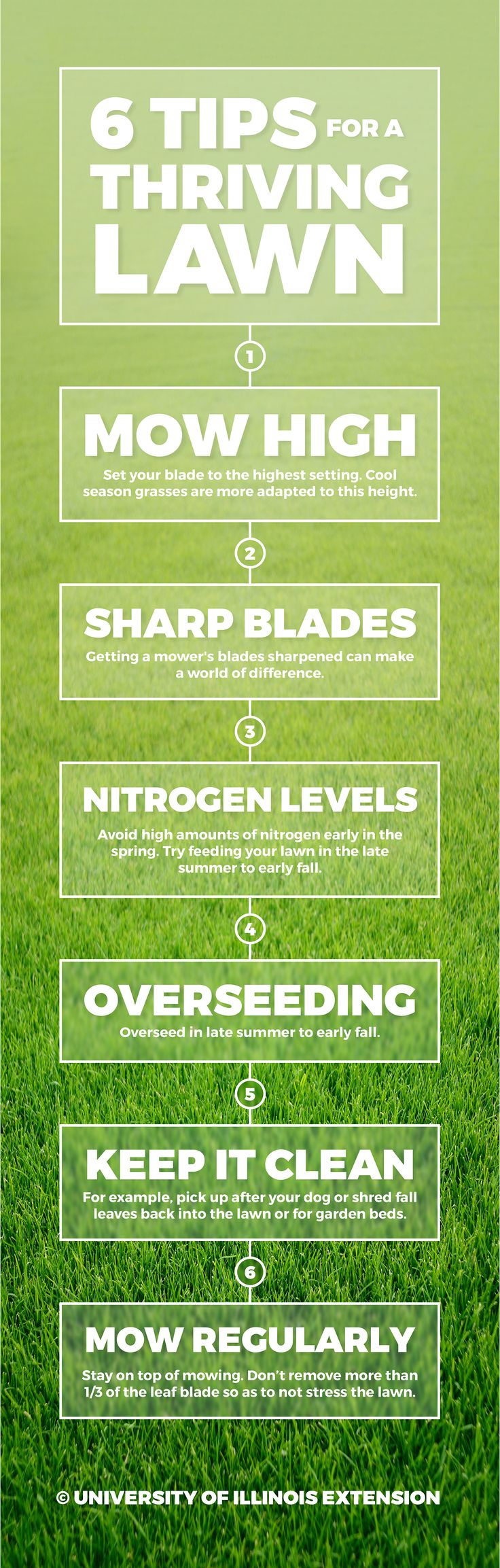 6 Tips for a Thriving Lawn #gardening #landscape