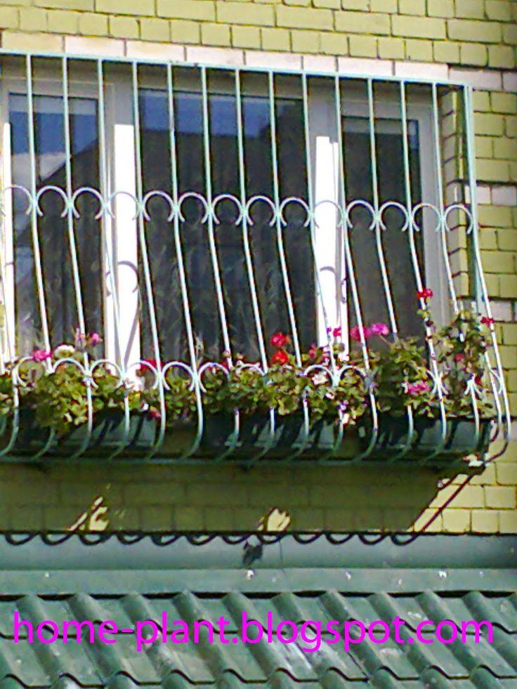 Комнатные растения для души и настроения: Балконные цветы и уход за ними: коломбины на балко...