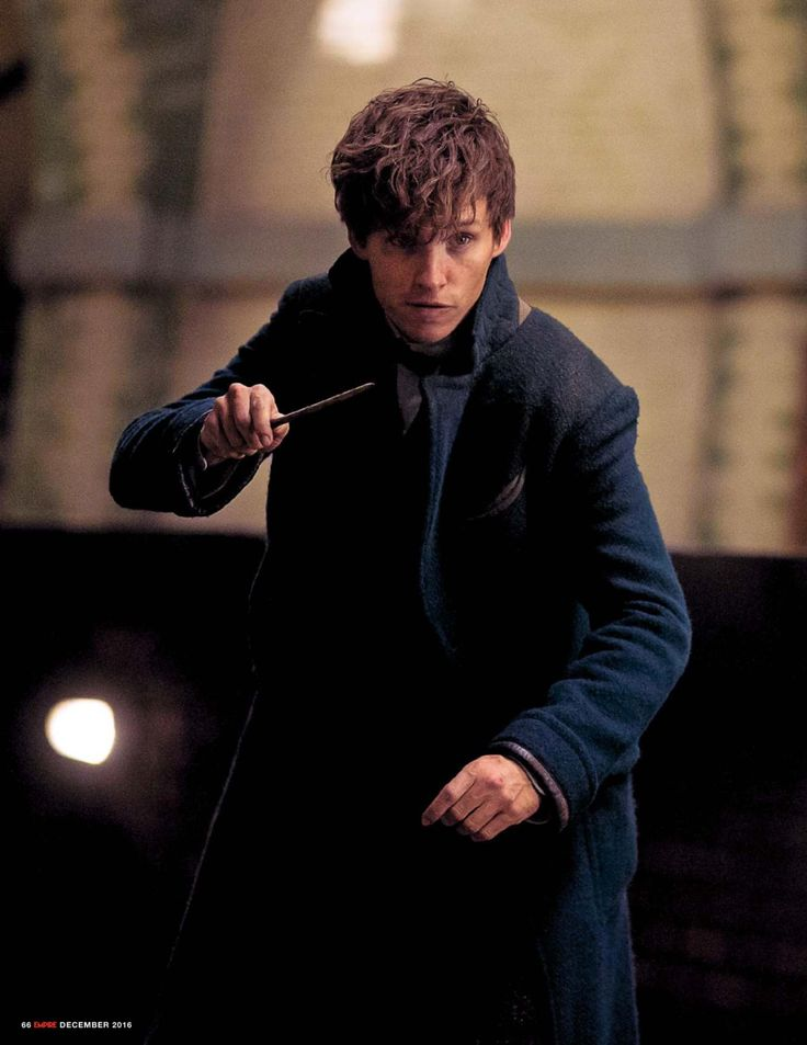 Newt Scamander... looking a bit like Frank Spencer? ok, showing my age now!!