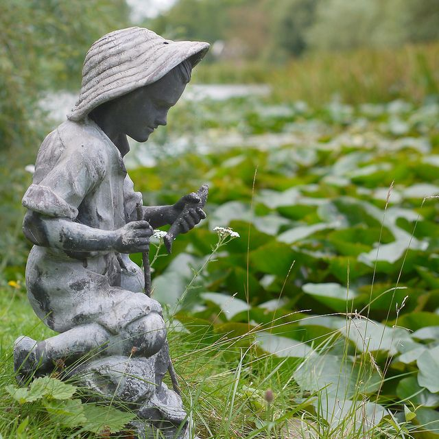Little fisher - Spetchley Park Gardens