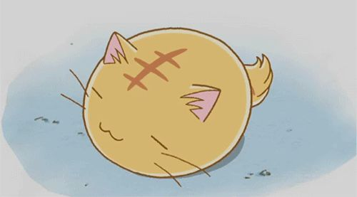 anime Animated GIFs | anime, cat, cute, gatinho, gato - inspiring animated gif picture on ...