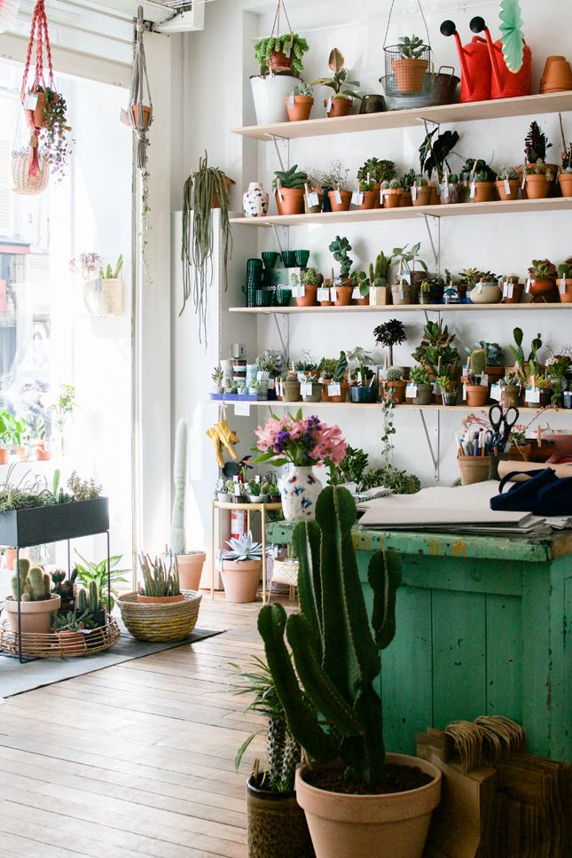New Plant Shop in Paris: Le Cactus Club