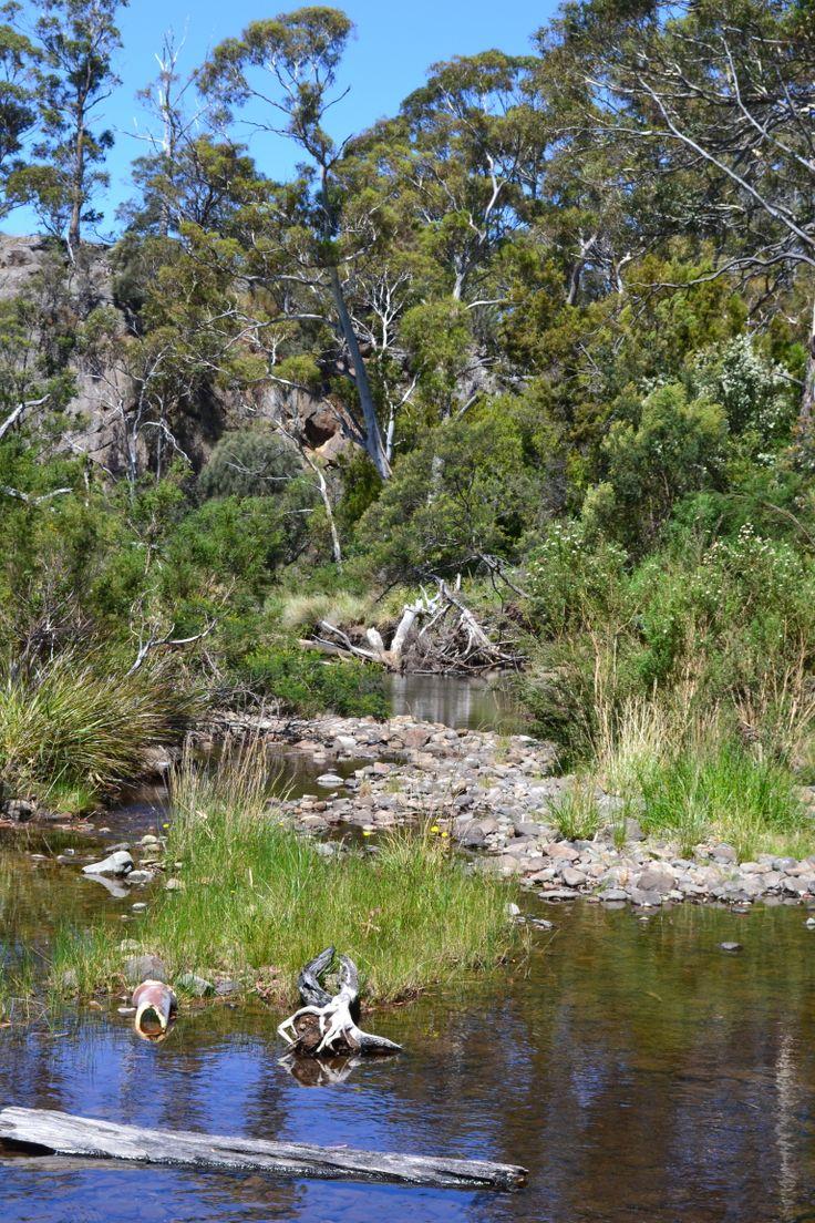 Lisdillon Rivulet on the east coast of #Tasmania
