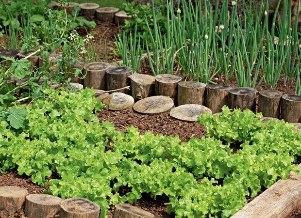 Folhas verdes frescas, temperos à mão e ervas prontas para os chás da tarde ou da noite são só alguns dos privilégios de quem tem uma horta caseira - leia-se: sem agrotóxicos. Cinco projetos provam que não há empecilhos, nem mesmo de tamanho, para planejar a sua