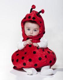 Costume di Carnevale da coccinella, rosso con pois neri e antenne, in morbido...