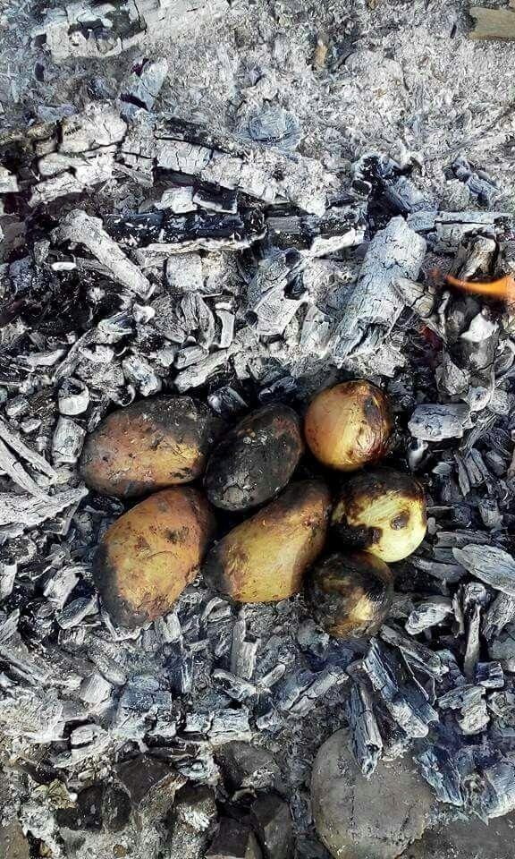 Patates  Közde