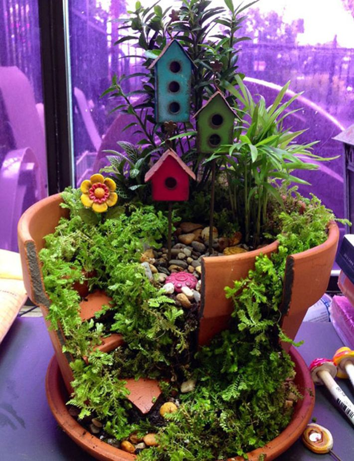 broken pot mini garden 18