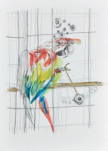 Wolfgang Neumann, 2014 Bleistift und Aquarellstift auf Papier Pencil and watercolor pencil on paper, 35 x 25 cm  In: Aras Ören, Kopfstand, Seite 136 / page 136