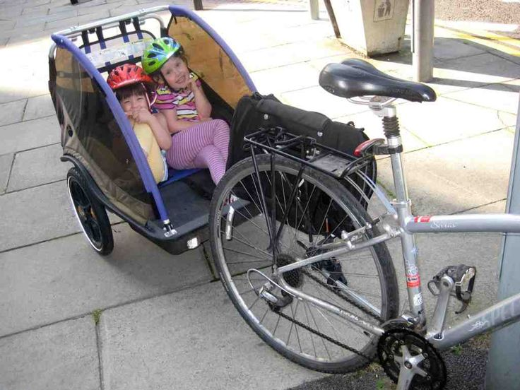 Double Child Bike Trailer