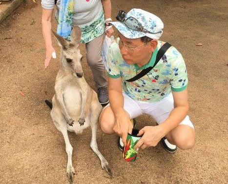 オーストラリア ケアンズ: