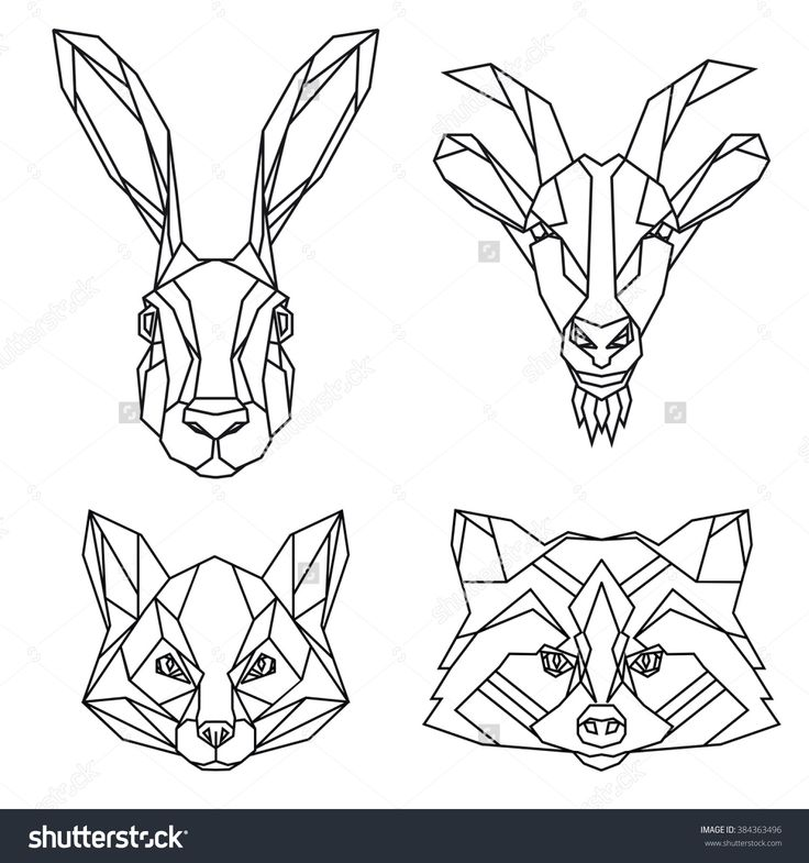 Geometric Set Of Hare, Goat, Fox And Raccoon Vector Animal Heads Drawn In Line Or Triangle Style, Suitable For Modern Tattoo Templates, Icons Or Logo Elements - 384363496 : Shutterstock