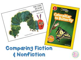 Mrs. Winter's Bliss: Fiction VS. Nonfiction Teaching Ideas